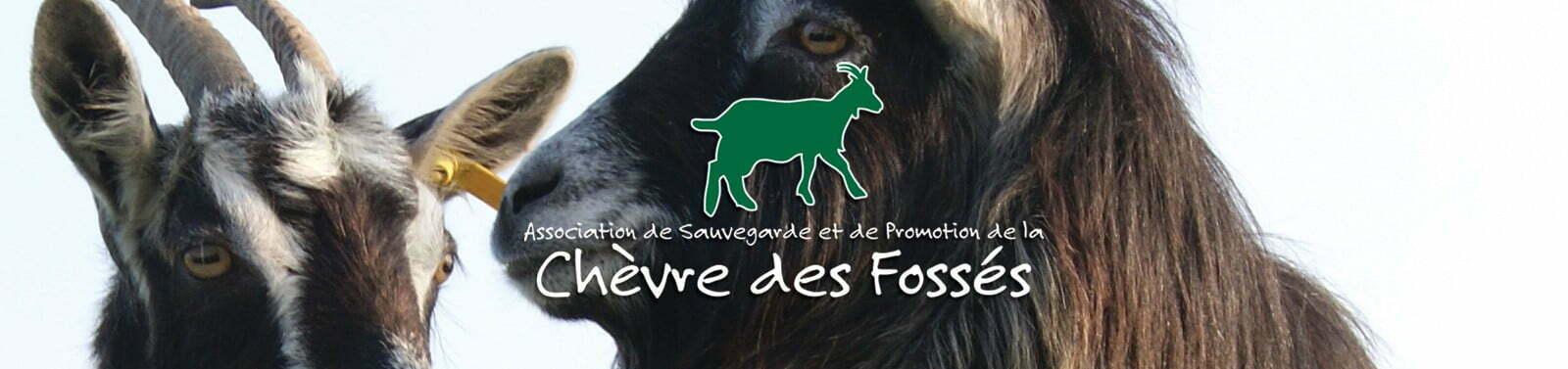 ASP Chèvre des Fossés